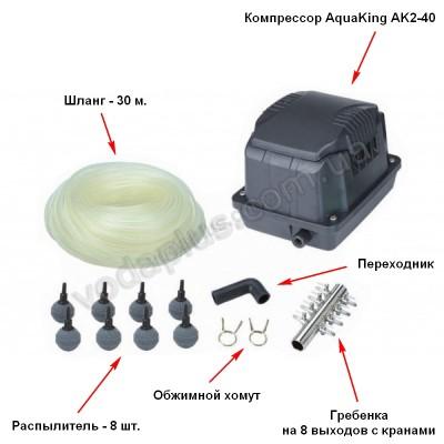 Аэратор Aquaking Set AK2-40 (к-кт)